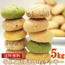 豆乳おからクッキー ソフト 国産 5kg 業務用 母の日 ス...