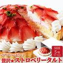 ストロベリータルト 5号サイズ 紅ほっぺ 静岡県産いちご 冷凍商品 学園祭 手土産 スイーツ