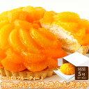 贅沢オレンジ&みかんタルト 5号サイズ フルーティー 冷凍商品 フルーツタルト ケーキ 送料無料