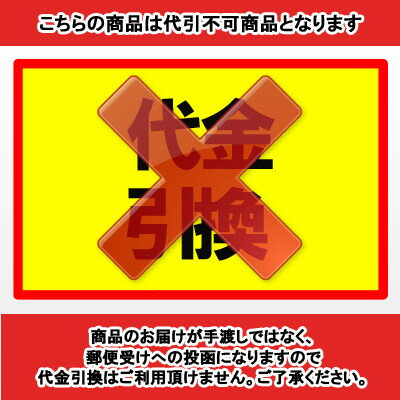 SignumPro Tornado(シグナムプ...の紹介画像3