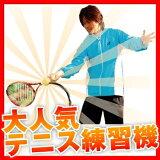 ウィニングショット テニス練習機「テニスガイド2」(練習用具 上達グッズ トレーニング 家 屋内 子供 ジュニア 初心者 ビギナー フォーム 素振り ボレー 基本 ストローク ガイ