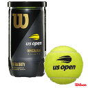 ウイルソン(Wilson) テニスボール US OPEN EXTRA DUTY (USオープン エクストラ・デューティ) 2球入 1缶 WRT1000J