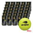 ウイルソン(Wilson) テニスボール US OPEN EXTRA DUTY (USオープン エクストラ・デューティ) 2球入 1箱(30缶/60球) WRT1000J