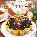 誕生日ケーキ バースデーケーキ 誕生日プレゼント 本州 送料無料星空のショコラ 5号ギ