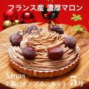 X'mas クリスマス ケーキ プレゼント 本州 送料無料至福のモンブランタルト 5号クリスマス ギ...