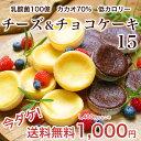 送料無料 1000円 乳酸菌100億チーズケーキ&カカオ70...