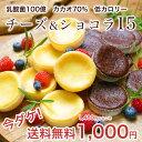 今だけ1000円ポッキリ!送料無料 乳酸菌100億チーズケーキ&カカオ70ガトーショコラ15