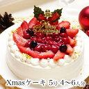 クリスマスケーキ 予約 本州 送料無料 2019プレミアムホ...