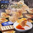 【点天】ひとくち餃子★1箱 45個入(タレ・ラー油付)【大阪土産 ぎょうざ 贈り物 お
