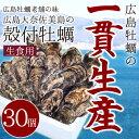【今だけ!400円OFFクーポン発行中】広島牡蠣老舗の味!殻付き牡蠣30個[生食用]
