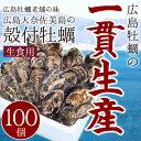 【今だけ!200円OFFクーポン発行中】広島牡蠣老舗の味!殻付き牡蠣100個[生食用]