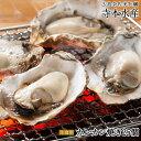 ショッピングから 旅サラダ で絶賛 紹介広島牡蠣老舗の味!カンカン焼き 殻付き牡蠣25個[生食可]
