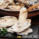広島牡蠣老舗の味!殻付き牡蠣20個[生食用]