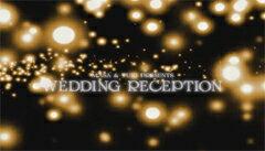 結婚式ムービーオープニングムービーDVD(結婚式・披露宴・ウェディング)