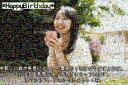 オーダーメイド/プレゼントフォト・モザイクアート(結婚記念日・誕生祝い・彼女彼氏・感動・両親へのプレゼント)A4印刷&額縁プレゼント