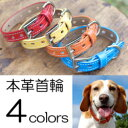 犬首輪 犬の首輪 中型犬用 小型犬用 子犬 ファーストレーベルNo.1