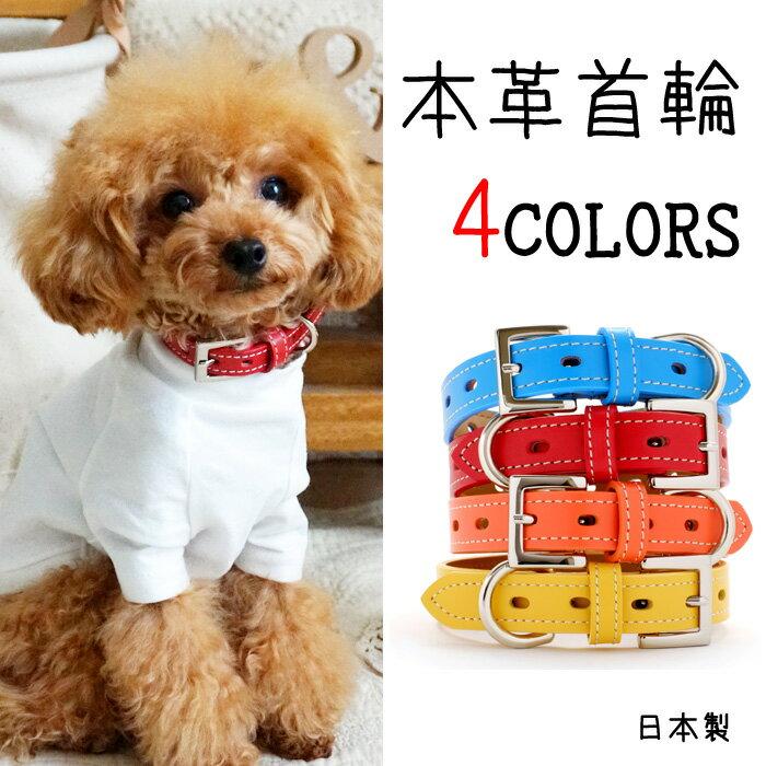 犬 首輪 犬の首輪 中型犬用 小型犬用 子犬 ファーストレーベルNo.1...:teruberu:10000027