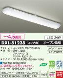 DXL-81238 ����̵��!DAIKO �������ץ����ס�¿��Ū������饤�ȡ�[LED����][ 4.5��]