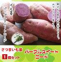 さつまいも パープルスイートロード サツマイモ