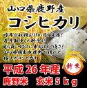 【予約受付中】【鹿野米】平成25年産 新米コシヒカリ 玄米5kg山口県周南市鹿野産
