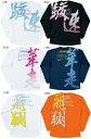 asics2008/09限定生産プリンントロングスリーブTシャツ