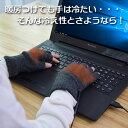 【15周年記念セール】USB指までヒーター手袋 USBWMGLV ※日本語マニュアル付き 【16時締切翌日出荷※祝前日・休業日前日を除く】