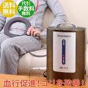 家庭用電気磁気治療器 バイオイーザー