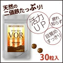 Ŵʬ VOR(������) �ʥ�����TETSU�ߥͥ�� 30γ����