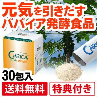 Carica celapi SAIDO-PS501 (3 g x 30 capsule)