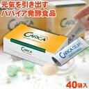 カリカセラピ 40包SAIDO-PS501 3g×40包入り【今だけ特典付き】