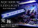 水槽用 LED 照明 LEDライト LED600 9W ブルー×ホワイト 【アクアリウム 熱帯魚 淡水魚 海水魚 水草 サンゴ 観賞魚 水槽 レイアウト】