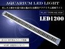 水槽用 LED 照明 LEDライト LED1200 ブルー×...