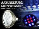 交換球 LED スポットライト 青8白4灯 照射角60度 水...