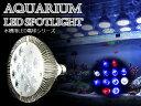 交換球 LED スポットライト 白2青8赤2 照射角60度 ...
