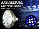 交換球 LED スポットライト 青8赤4 照射角60度 水槽用照明 LED照明 LEDライト 【アク
