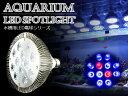 交換球 LED スポットライト 青10赤2 照射角60度 水槽用照明 LED照明 LEDライト 【アクアリウム 熱帯魚 淡水魚 海水魚 水草 サンゴ イソギンチャク ミドリイシ シャコガイ 観賞魚 水槽 レイアウト】