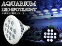 交換球 LED スポットライト 白12灯 照射角90度 水槽用照明 LED照明 LEDライト 【アクアリウム 熱帯魚 淡水魚 海水魚 水草 サンゴ イソギンチャク ミドリイシ シャコガイ 観賞魚 水槽 レイアウト】
