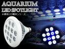 交換球 LED スポットライト 白10青2 照射角90度 水槽用照明 LED照明 LEDライト 【アクアリウム 熱帯魚 淡水魚 海水魚 水草 サンゴ イソギンチャク ミドリイシ シャコガイ 観賞魚 水槽 レイアウト】