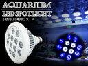 交換球 LED スポットライト 青8白4 照射角90度 水槽用照明 LED照明 LEDライト 【アクアリウム 熱帯魚 淡水魚 海水魚 水草 サンゴ イソギンチャク ミドリイシ シャコガイ 観賞魚 水槽 レイアウト】