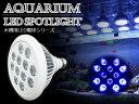 交換球 LED スポットライト 青8紫外線4灯 UV付 照射...
