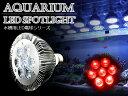 交換球 LED スポットライト 赤7灯 照射角60度 水槽用照明 LED照明 LEDライト 【アクアリウム 熱帯魚 淡水魚 海水魚 水草 サンゴ イソギンチャク ミドリイシ シャコガイ 観賞魚 水槽 レイアウト】