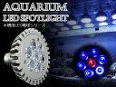 交換球 LED スポットライト 青6/赤1 照射角60度 水槽用照明 LED照明 LEDライト 【アクアリウム 熱帯魚 淡水魚 海水魚 水草 サンゴ イソギンチャク ミドリイシ シャコガイ 観賞魚 水槽 レイアウト】