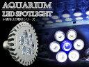 交換球 LED スポットライト 白6青1 照射角60度 水槽用照明 LED照明 LEDライト 【アクアリウム 熱帯魚 淡水魚 海水魚 水草 サンゴ イソギンチャク ミドリイシ シャコガイ 観賞魚 水槽 レイアウト】