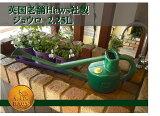 易于由英国制造浇水[限量版] HAWS使用Puratchikku制造成本是送货费引无朗里奇2.25L罐Yappari:由HAWS浇水可制造 - 绿色 - 英格兰[英国 HAWS社製 ジョウロ ホーズ/ ロングリーチカン カラー(450)グリーン 2.25L