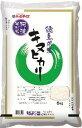 阿波そだち キヌヒカリ5kg |4908704061180:食品(直)令和1年産