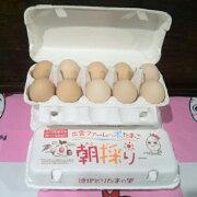 山口県 出雲ファーム 朝採りたまごセット 30個入り 41548:卵