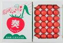 【エントリーでポイント5倍! ~10/23 09:59まで】高知県 奏フルーツトマト 20~24玉|11358:野菜