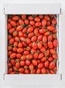 【産地直送】熊本県産アイコトマト 3kg ミニトマト とまとリコピン|14699:野菜