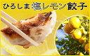 (送料込み) 塩レモン餃子 20個入り 井辻食産株式会社(期日指定できません)