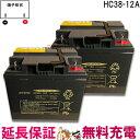 キャッシュレス5%還元 2個セット 12ヶ月保証付 HC38-12A 電動車椅子 バッテリー シニアカー 電動カート 日立 サイクルバッテリー 【互換】 SC38-12 SER38-12 WP40-12NE